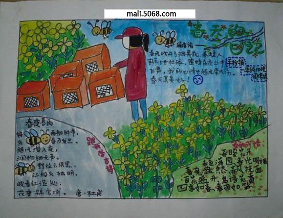 三年级关于春天手抄报 春天的日记图片